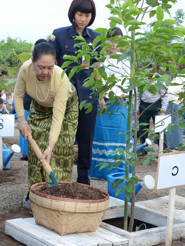 First Lady Daw Cho Cho plants a star flower tree to usher in Myanmar Women's Day in Nay Pyi Taw yesterday. Photo: MNA