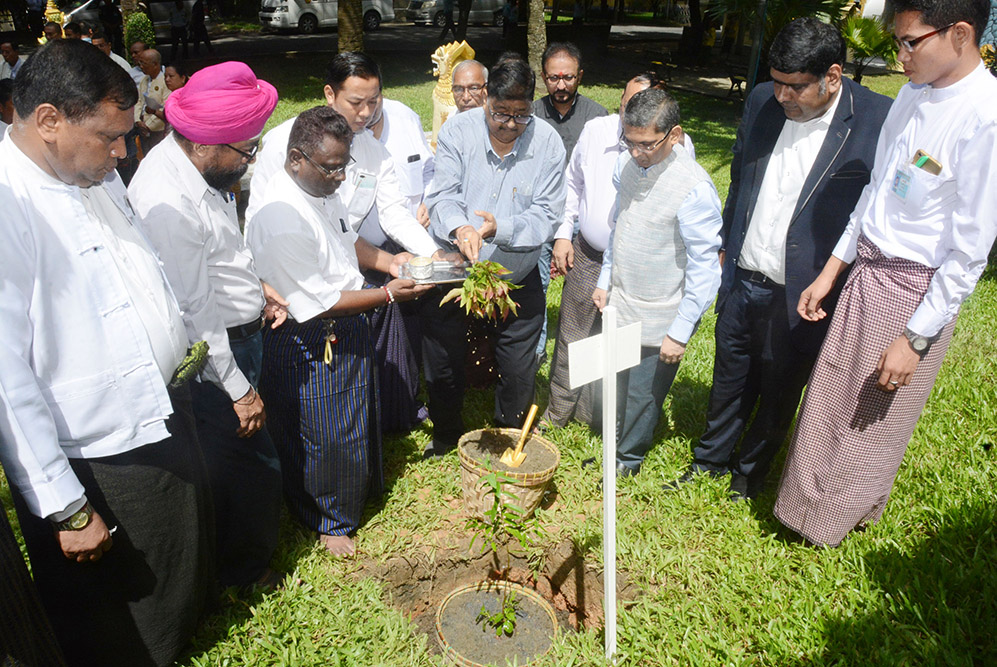 Sandalwood Plantation Organizing Committee Chairman and officials from India Embassy plant Sandalwood trees to mark 150th birthday of Mahatma Gandhi in Yangon yesterday.Photo: MNA