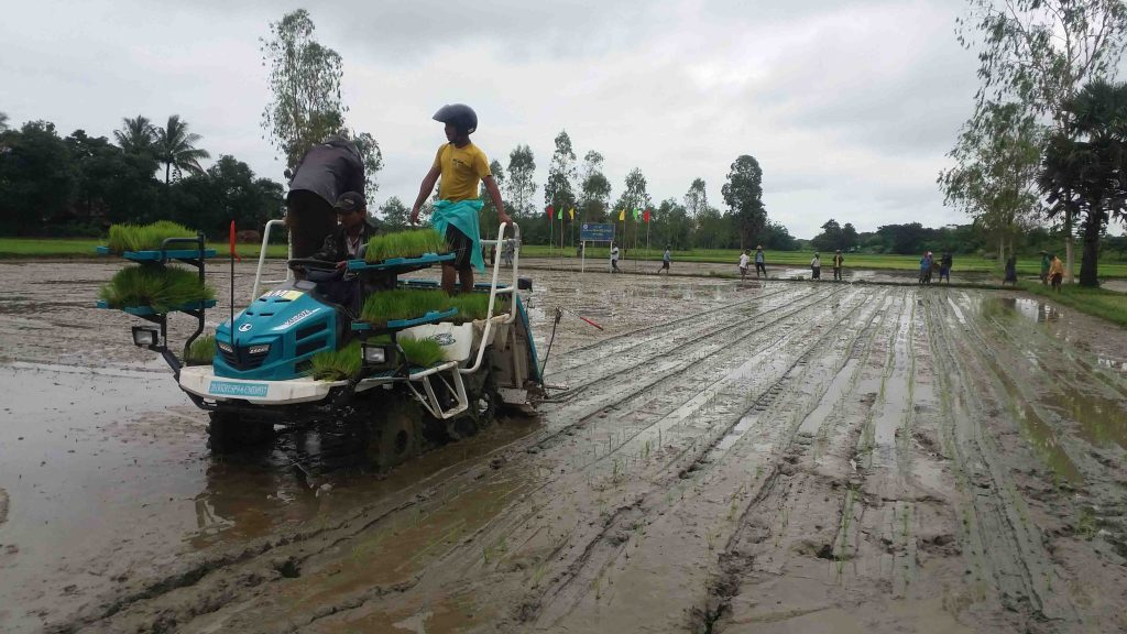 Farmers planting rice in the field by using rice planting machine.Photo: Chit Thet Lwe (EainMe IPRD)