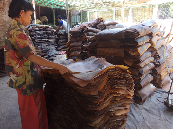 A farm worker checks the quality of smoked rubber sheets at a rubber market in Thuwunnawady in Mon State. Photo: Khone (Win Pa)