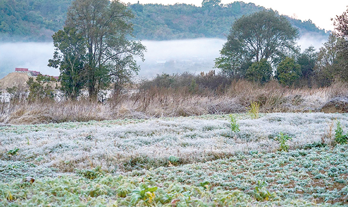 A scene captures icy dusts covering crops and all parts in Bernard Village.