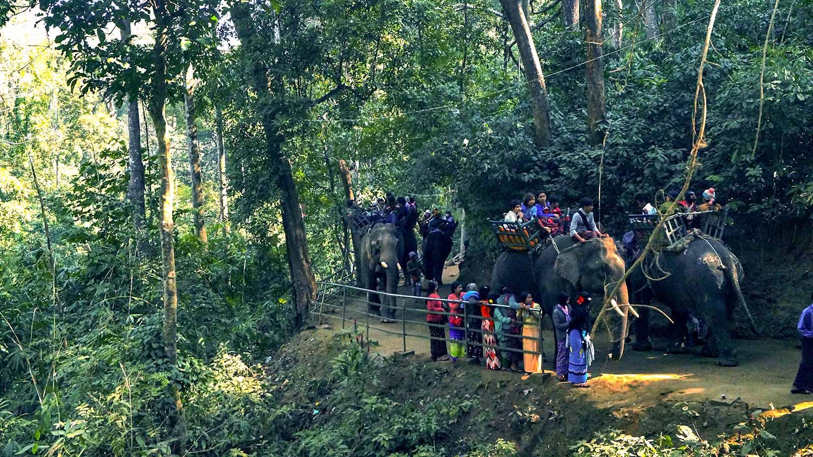Pilgrims take elephant ride to Alaungdaw Kathapa cave at the Alaungdaw Kathapa National Park. Photo: Than Htay Aung (Kani)