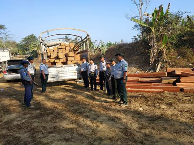 Officials check the confiscated timbers in Ottwin on 5 March. Photo: Lu Aung (Katha)