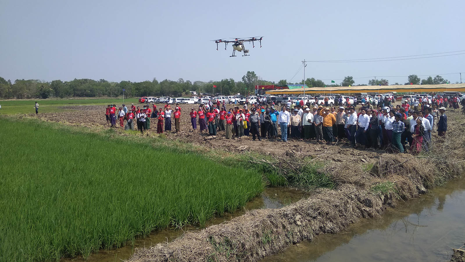 Ayeyawady Region Chief Minister U Hla Moe Aung and locals observe using drone in spraying pesticide over rice plantation.Photo: Maung Maung Myint