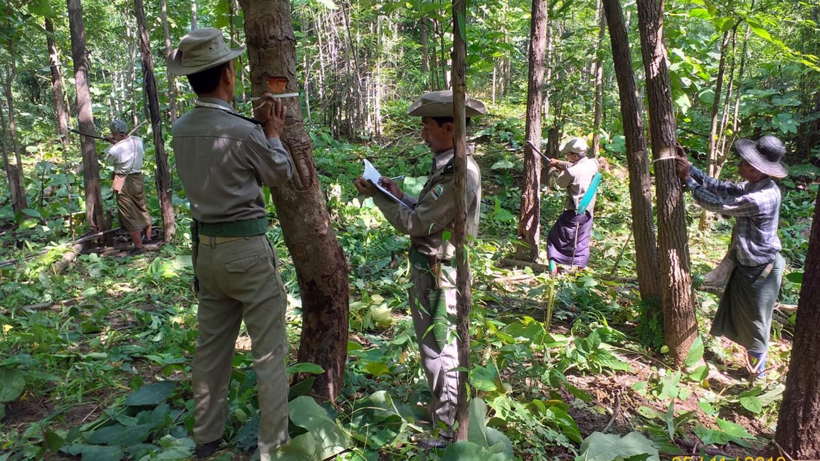 Officials collecting data on forest conservation in Mindone Township, Hayet District.
