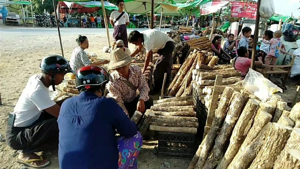 Myanmar Thanakha bark being sold in the market.  Photo: Min Htet Aung (Man sub- printing house)