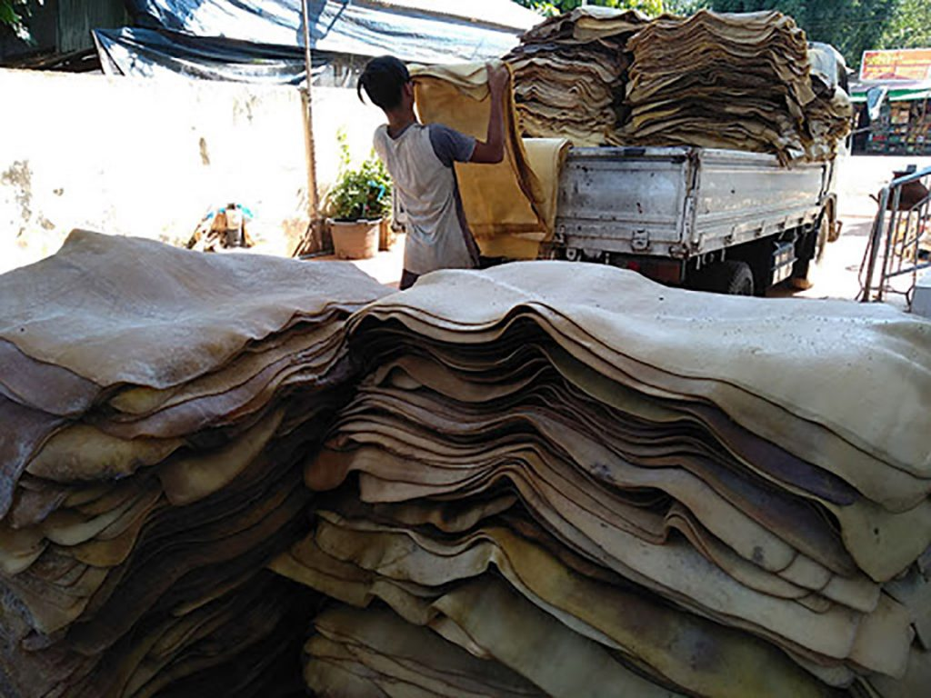 A worker loading smoked rubber sheets to a truck at a rubber market. Photo: Khun (Win Pa)