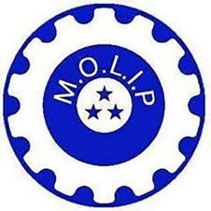 Molip 1024x1024 1