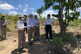Union Minister U Ohn Win inspects forest plantations in Magway Region