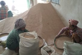 China high demand hikes sesame prices in Mandalay market