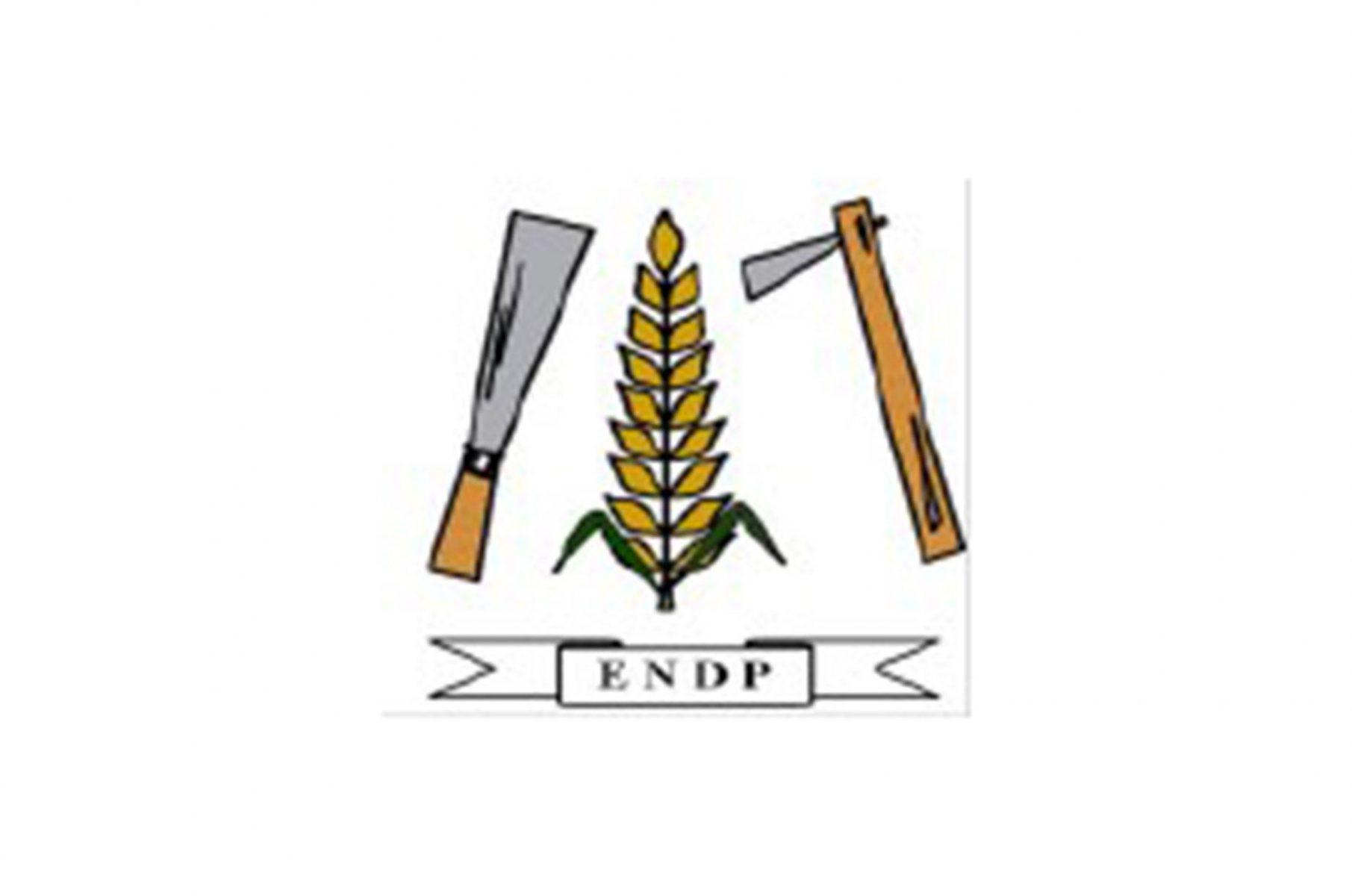 ENDP logo scaled
