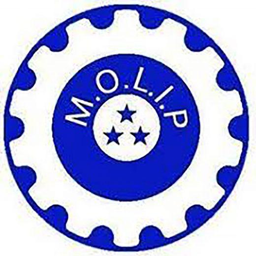 Molip