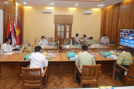 ASEAN nations discuss COVID's effects on agro, forestry sectors at 42nd AMAF
