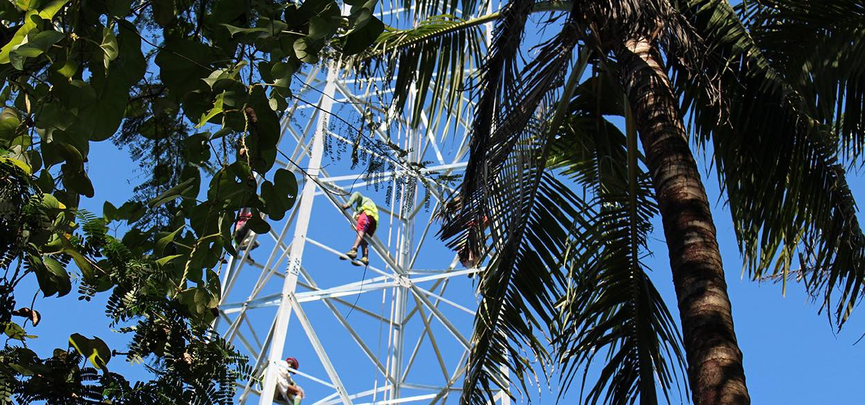 Photo 2 Workers maintain a network tower in Myanmar