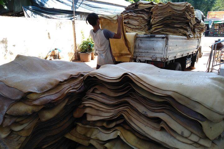 Worker rolling raw rubber