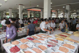 Black bean price down by over K20,000 per tonne in post-election