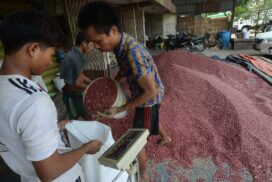 Bayintnaung Commodity Depot to reopen on 15 December for pulses trade