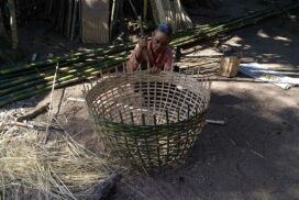 Bamboo chicken coops on brink of extinction