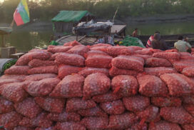 Onion warehouse owners in Minbu facing loss as price plummets
