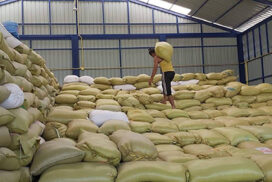 1 mln tonnes of corn expected to export to Thailand this year