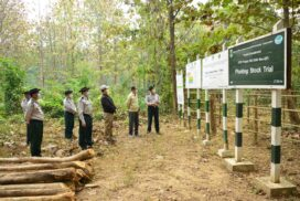 Union Minister U Khin Maung Yi inspects Moe Swe forest research camp