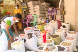 Black bean price on downward trend in domestic market