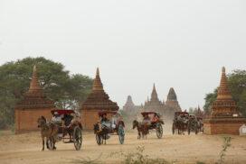 Horse-cart riding businesses face financial hardship in Bagan-NyaungU