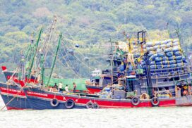 Fishery exports plunge to $380.65 mln in 2020-2021FY