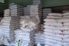 Myanmar rice export down by US$ 30 mln in seven months of this FY