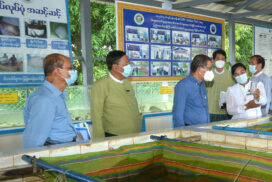 Research work to be expanded for livestock and fisheries development