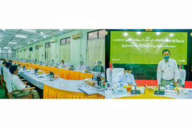 MoNREC to accelerate environmental conservation in Magway Region