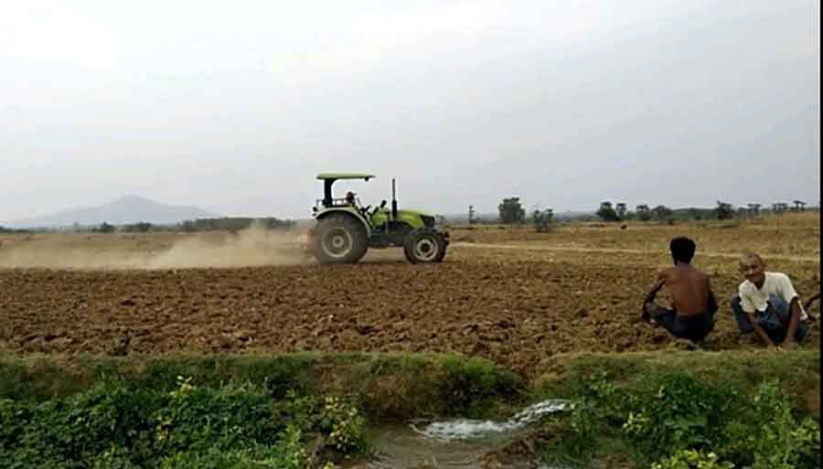 Kitchen crops on alluvial land of Sindewa Creek give family incomes to local farmers