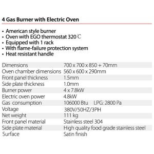 Gas-Burner-With-Electric-Oven1